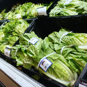 mkgalleryamp; Wine: Some Romaine Lettuce Is Safe to Eat, as FDA Traces Source of E Coli Outbreak