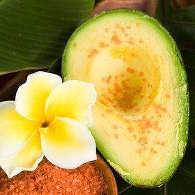 mkgalleryamp; Wine: Hawaii Ramps Up Avocado Shipments to Mainland U.S.