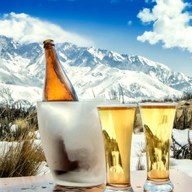 mkgalleryamp; Wine: How Long Can You Keep a Hoppy Beer?