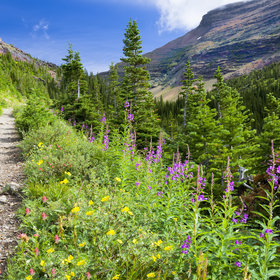 Food & Wine: 5 Delicious Ways to Support (and Enjoy) National Parks This Summer
