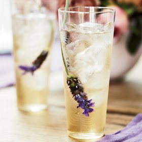 mkgalleryamp; Wine: Sophie Dahl's Iced Tea