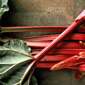 mkgalleryamp; Wine: 11 Chefs on Their Favorite Ways to Use Rhubarb