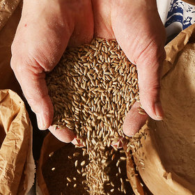 Food & Wine: Forget Wheat: Americans' Taste for Ancient Grains Is Growing