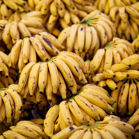 Food & Wine: How Scientists Are Using Bananas to Detect Skin Cancer