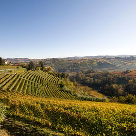 Food & Wine: The 50th Anniversary of Cru Barolo