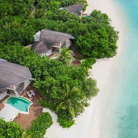 Food & Wine: The Maldives' Most Luxurious New Resort Has a Treetop Restaurant