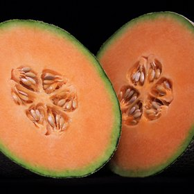 Food & Wine: What You Think Are Cantaloupes Are Not Actually Cantaloupes