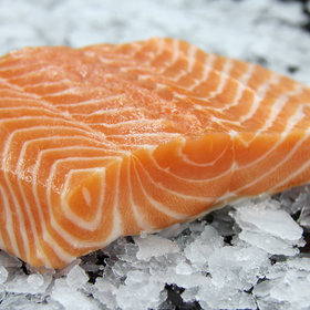 mkgalleryamp; Wine: The 6 Best Sites to Buy Sushi-Grade Fish Online, According to Chefs