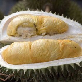 Food & Wine: The World's Smelliest Fruit Grounded an Entire Plane in Indonesia