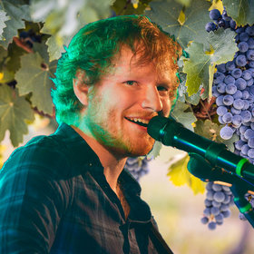 Food & Wine: This Ed Sheeran Parody Is All About The