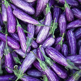 Food & Wine: 14 Gorgeous Eggplant Varieties from Four Root Farm
