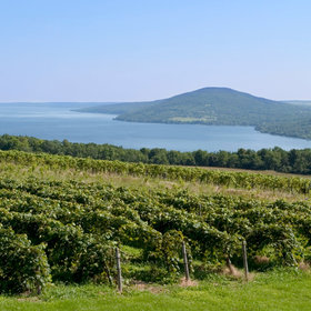 Food & Wine: You'll Never Guess What State Has 2018's Top Wine Destination