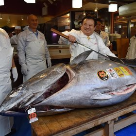 mkgalleryamp; Wine: A Giant Bluefin Tuna Sold for $3.1 Million in Tokyo