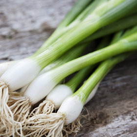 Food & Wine: You Can Grow Your Own Scallions with Nothing More Than a Glass of Water—Here's How