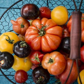 Food & Wine: The 50 Best Summer Foods: A State-by-State Guide