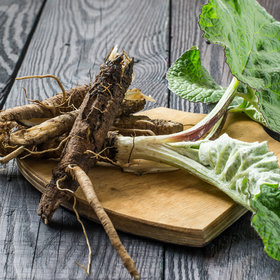 mkgalleryamp; Wine: What Is Burdock Root and How Do You Use It?