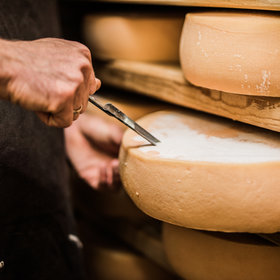 mkgalleryamp; Wine: How a Professional Cheese Expert Grades Cheeses
