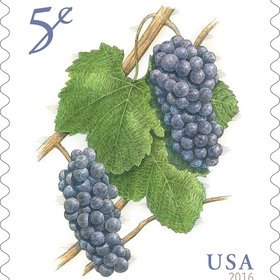 Food & Wine: US Government Solves International Crisis, Issues Pinot Noir Stamp