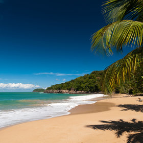 mkgalleryamp; Wine: You Can Book a Cheap Flight to the Caribbean for $59 One-way on Norwegian