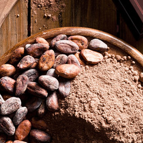 Food & Wine: Hershey Won't Source Cocoa from Areas with New Deforestation