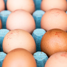Food & Wine: Egg Prices Are the Cheapest They've Been in a Decade