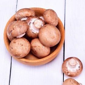 Food & Wine: How to Keep Mushrooms Fresh So They Don't Get Slimy