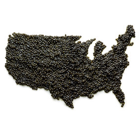 Food & Wine: The American Caviar Renaissance