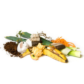 Food & Wine: New York's Composting Revolution