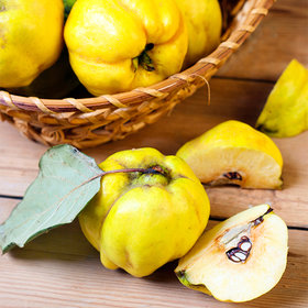 Food & Wine: Quince is the Key to Delicious Winter Cocktails