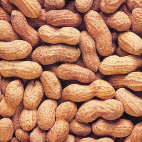 Food & Wine: Can Childhood Peanut Allergies Be Cured?