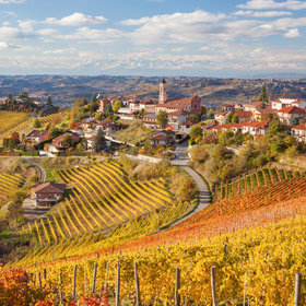 Food & Wine: A Guide to What's Hot in Piedmont Right Now