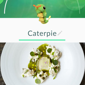 Food & Wine: A Table at Noma Played Pokemon Go for Their 'Entire Meal,' Tweets Rene Redzepi