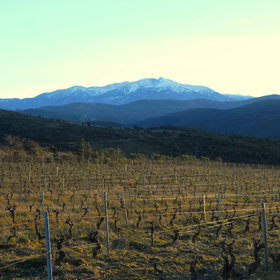 Food & Wine: A Dry Wine Revolution in France's Roussillon