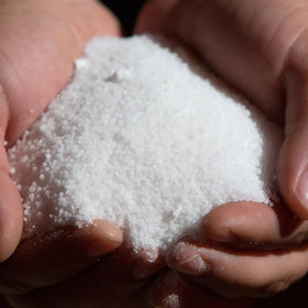 Food & Wine: Why Do We Consume So Much Salt?