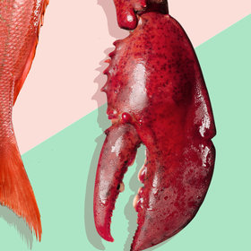 Food & Wine: How to Select, Store, and ServeSeafood Safely, According to an Expert