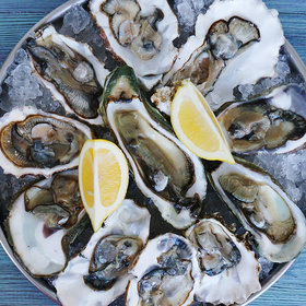 Food & Wine: Oysters in Seattle Linked to Spike in Vibriosis Cases