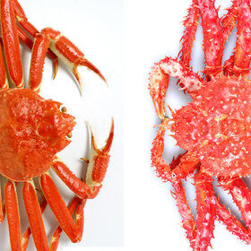 Food & Wine: What's the Difference Between Snow Crab and King Crab?