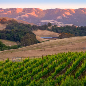 Food & Wine: Sonoma Harvest, a New Wine Country Music Festival, Sounds Like Total Paradise