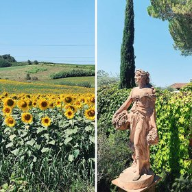 Food & Wine: You Can Visit Andrea Bocelli's Family Vineyard in Tuscany — and Even Record Your Own Song in His Studio