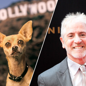 Food & Wine: Taco Bell Chihuahua Voice Actor Says It Was the Best Job