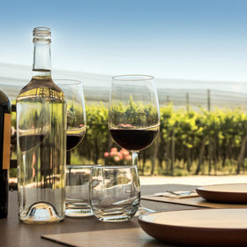 mkgalleryamp; Wine: Drink These 10 Bottles and Become a Wine Master