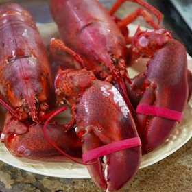 Food & Wine: Michael Anthony: How to Break Down Lobster