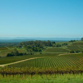 mkgalleryamp; Wine: Australia's Oldest Wine Region Is One of Its Best-kept Secrets