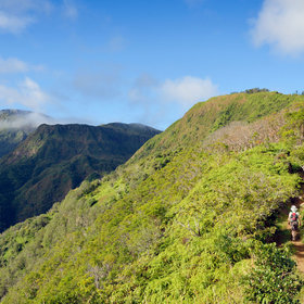 Food & Wine: The 8 Best Maui Hikes for Stunning Views and Spectacular Wildlife