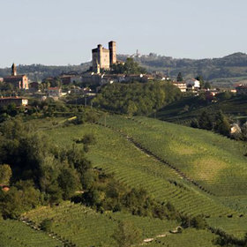 Food & Wine: Splurge vs. Steal: A Barolo Bargain