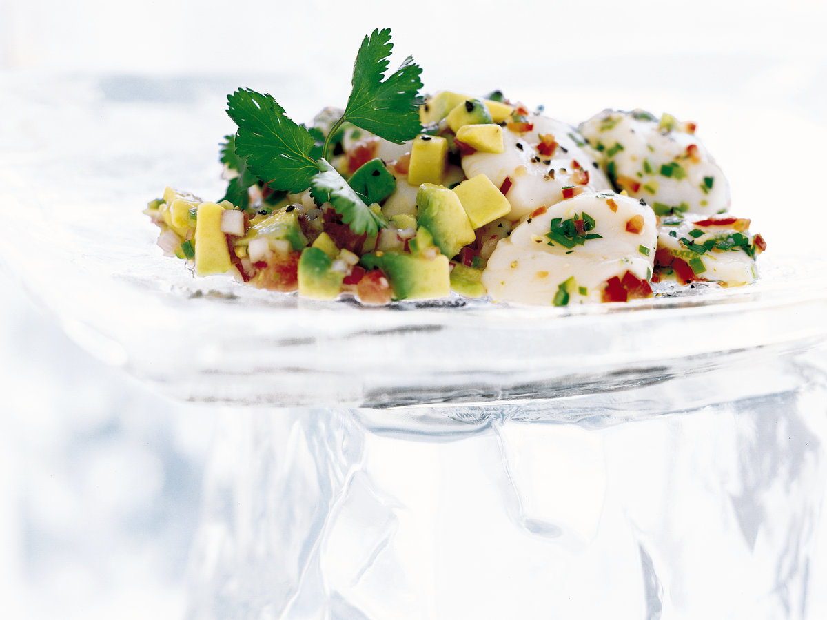 Scallop Seviche with Avocado Dressing
