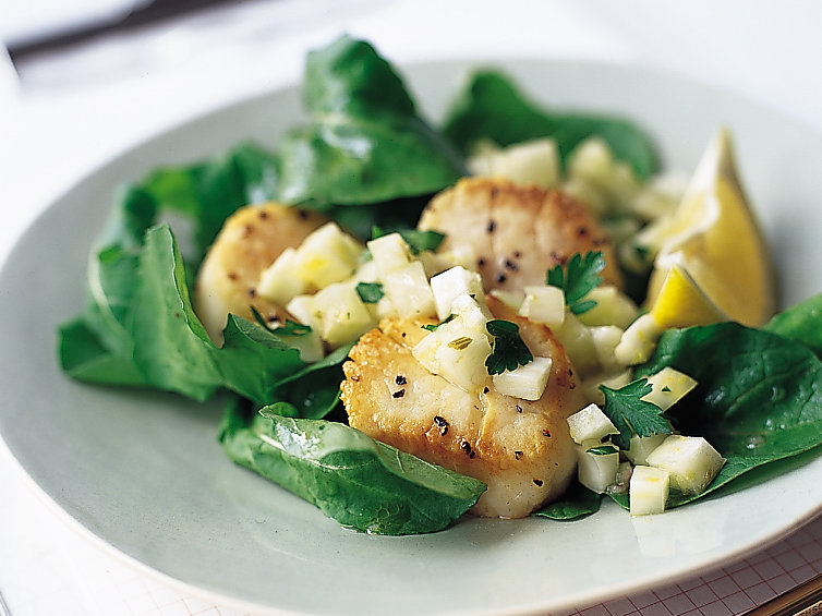 Seared Scallops with Fennel and Lemon Relish