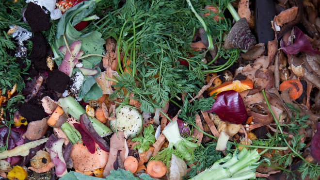 Food & Wine: Food Waste Energy
