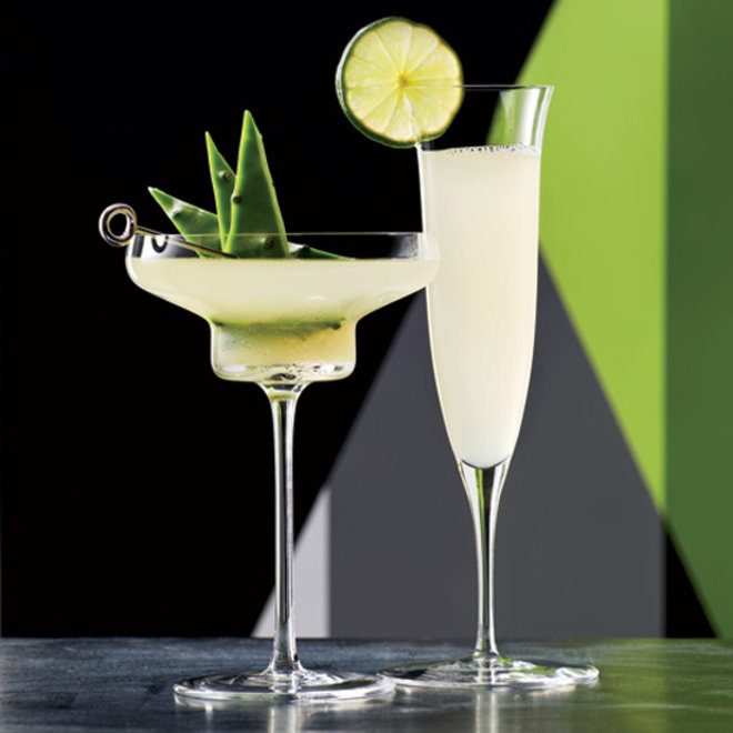 Food & Wine: Tequila Agave May Combat Osteoporosis