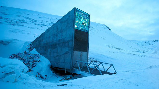 arctic seed bank